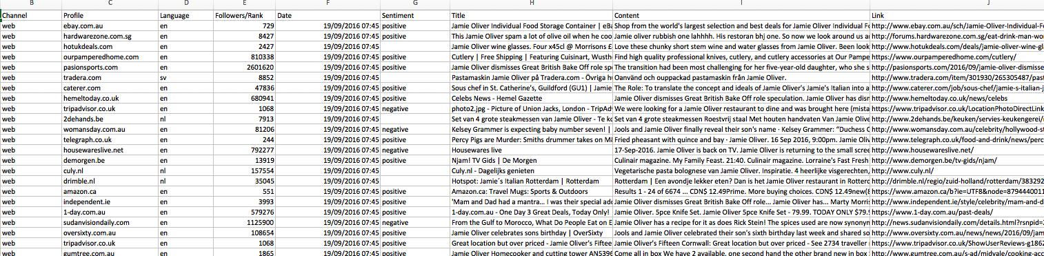 Brand Monitoring Excel Spredsheet