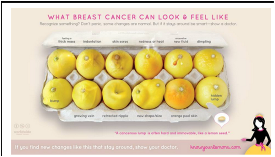 KnowYourLemons-campaign